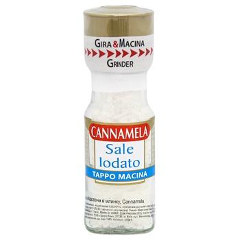 Salt Cannamela iodinated 63g Italy - buy, prices for CityMarket - photo 1