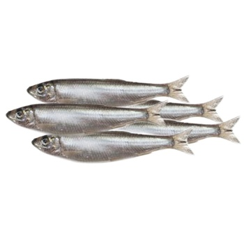 Frozen Sprat by Weight - buy, prices for Varus - photo 1