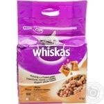 Food Whiskas dry for cats 4000g Poland