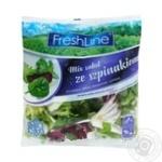 Салат Freshline Микс зі шпинатом 120г - купити, ціни на Ашан - фото 1