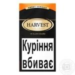Harvest Club Sweet Vanilla Cigarillos 10pcs