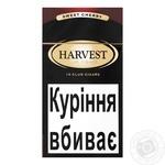 Harvest Club Cherry Cigars 10pc