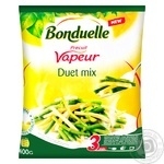 Bonduelle Duet mix frozen green and yellow string beans 400g
