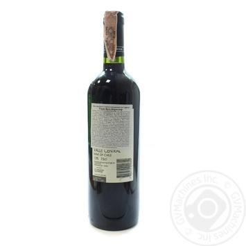 Вино Terra Vega Carmenere Kosher Valle Central червоне сухе 13% 0,75л - купити, ціни на Novus - фото 2