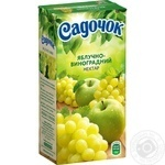 Sadochok Apple-grape Nectar 0.5l