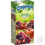 Sadochok Apple-red grape Nectar 0.95l