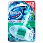 Bloc Domestos needles for toilets 40g
