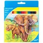Карандаши Kite Животные цветные 24шт