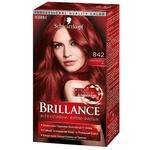 Brillance 842 Cuba Hot Night Hair Dye 142,5ml - buy, prices for Novus - image 1