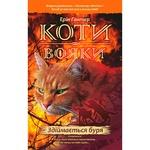 Erin Hunter Warrior Cats Storm Rises Book 4