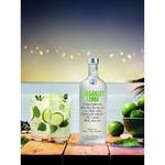 Absolut Lime Vodka 40% 0,7l - buy, prices for CityMarket - photo 2
