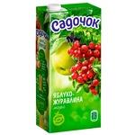 Sadochok Apple and Cranberry Fruit Juice 0,95l