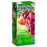 Sadochok Apple-red grape Nectar 1,93l