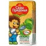 Puree Sady pridonia apple for children 125ml Russia