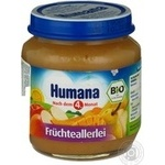 Baby puree Humana Fruit mix for 6+ month old babies glass jar 125g Germany