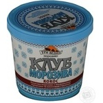 Ice-cream Tree bears Ice club with coconut flavor 250g bucket Ukraine
