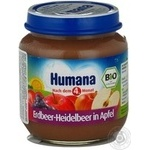 Puree Humana apple for children 125g glass jar Germany