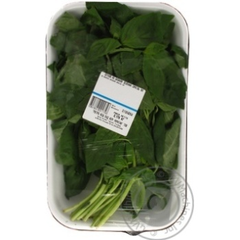 Базилик зеленый Израиль кг