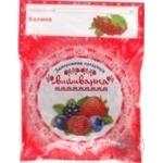 Fruit guelder rose Vushivanka frozen 400g