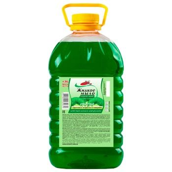 Soap kiwifruit liquid 4500g