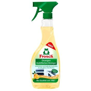 Frosch Remedy for smooth surfaces of orange 500ml - buy, prices for Novus - image 1