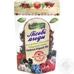 Tea Polissia tea Wild berries 100g Ukraine