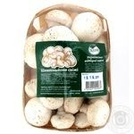 Mushrooms cup mushrooms Zelena kraina fresh 600g Ukraine