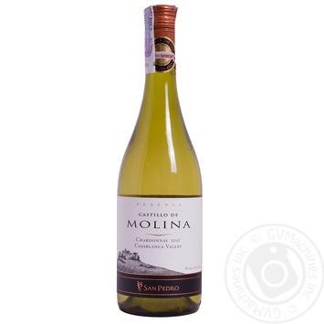 Вино Castillo De Molina Chardonnay Reserva белое сухое 14,5% 0,75л - купить, цены на Novus - фото 1