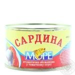 Fish sardines More in tomato sauce 230g can