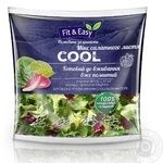 Салат Fit&Easy Cool 140г