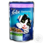 Felix Trout Canned For Cats Food 100g