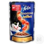 Felix in jelly with beef and tomatoes for cats food 100g