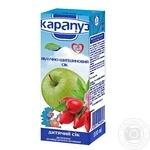 Unclarified juice Karapuz apple-rose hip with sugar for 4+ months babies 200ml