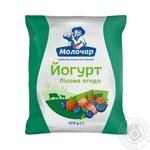Molochar Wild Berries Flavored Yogurt 1% 400g