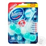Bloc Domestos for toilets 55g