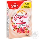 Sante with fruits granola 500g