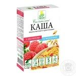 Terra instant oatmeal with raspberry and cream 5pcs 38g