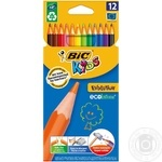 BIC Kids Evolution Pencil 12pcs