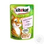 Kitekat food for cats with salmon 100g
