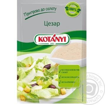 Приправа Kotanyi к салату Цезарь 13г - купить, цены на Novus - фото 1