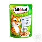 Корм для котів Kitekat з телятиною в соусі 100г