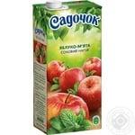 Sadochok with apple-mint nectar 0,95l