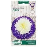 Semena Ukrayiny Aster Pompom Constellation Seeds 0.25g