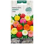 Semena Ukrayiny Zinnia Low Midget Mix Seeds 0.5g
