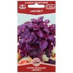 Golden Garden Amethyst Violet Basil Seeds 0,3g