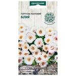 Seed portulak Semena ukrainy 0.1g Ukraine