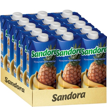 Sandora Multivitamin Nectar 0,5l - buy, prices for EKO Market - photo 2