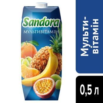 Sandora Multivitamin Nectar 0,5l - buy, prices for CityMarket - photo 4
