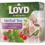 Tea Loyd Private import herbal cranberry 20pcs 40g