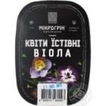 Микрогрин цветы съедобные виола